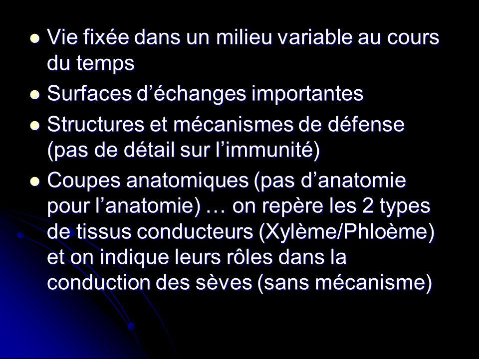 Vie fixée dans un milieu variable au cours du temps Vie fixée dans un milieu variable au cours du temps Surfaces déchanges importantes Surfaces déchanges importantes Structures et mécanismes de défense (pas de détail sur limmunité) Structures et mécanismes de défense (pas de détail sur limmunité) Coupes anatomiques (pas danatomie pour lanatomie) … on repère les 2 types de tissus conducteurs (Xylème/Phloème) et on indique leurs rôles dans la conduction des sèves (sans mécanisme) Coupes anatomiques (pas danatomie pour lanatomie) … on repère les 2 types de tissus conducteurs (Xylème/Phloème) et on indique leurs rôles dans la conduction des sèves (sans mécanisme)
