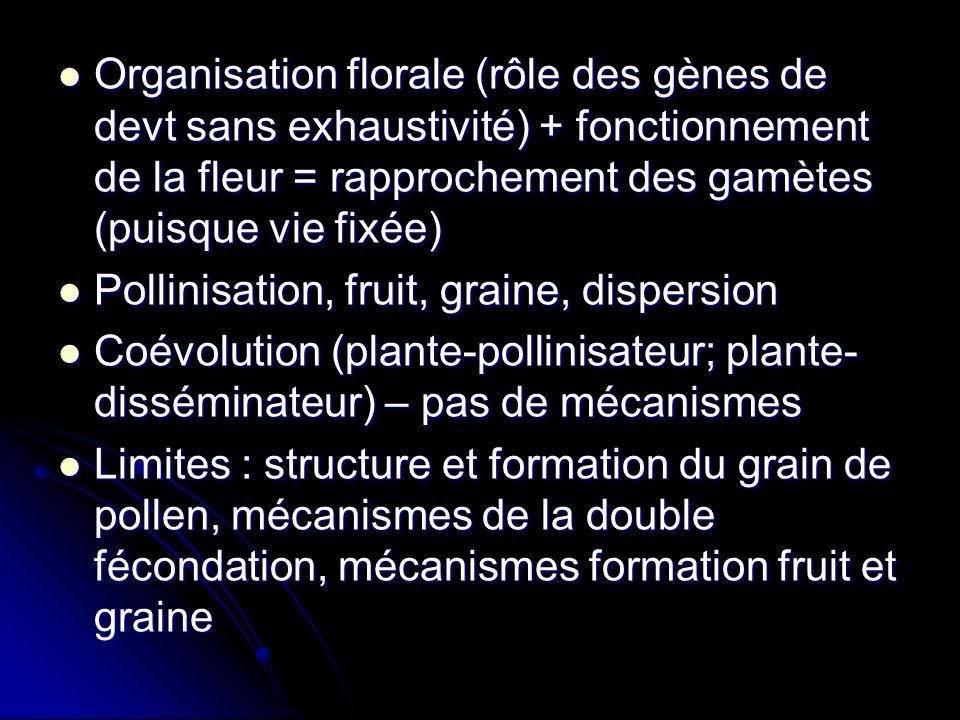 Organisation florale (rôle des gènes de devt sans exhaustivité) + fonctionnement de la fleur = rapprochement des gamètes (puisque vie fixée) Organisation florale (rôle des gènes de devt sans exhaustivité) + fonctionnement de la fleur = rapprochement des gamètes (puisque vie fixée) Pollinisation, fruit, graine, dispersion Pollinisation, fruit, graine, dispersion Coévolution (plante-pollinisateur; plante- disséminateur) – pas de mécanismes Coévolution (plante-pollinisateur; plante- disséminateur) – pas de mécanismes Limites : structure et formation du grain de pollen, mécanismes de la double fécondation, mécanismes formation fruit et graine Limites : structure et formation du grain de pollen, mécanismes de la double fécondation, mécanismes formation fruit et graine