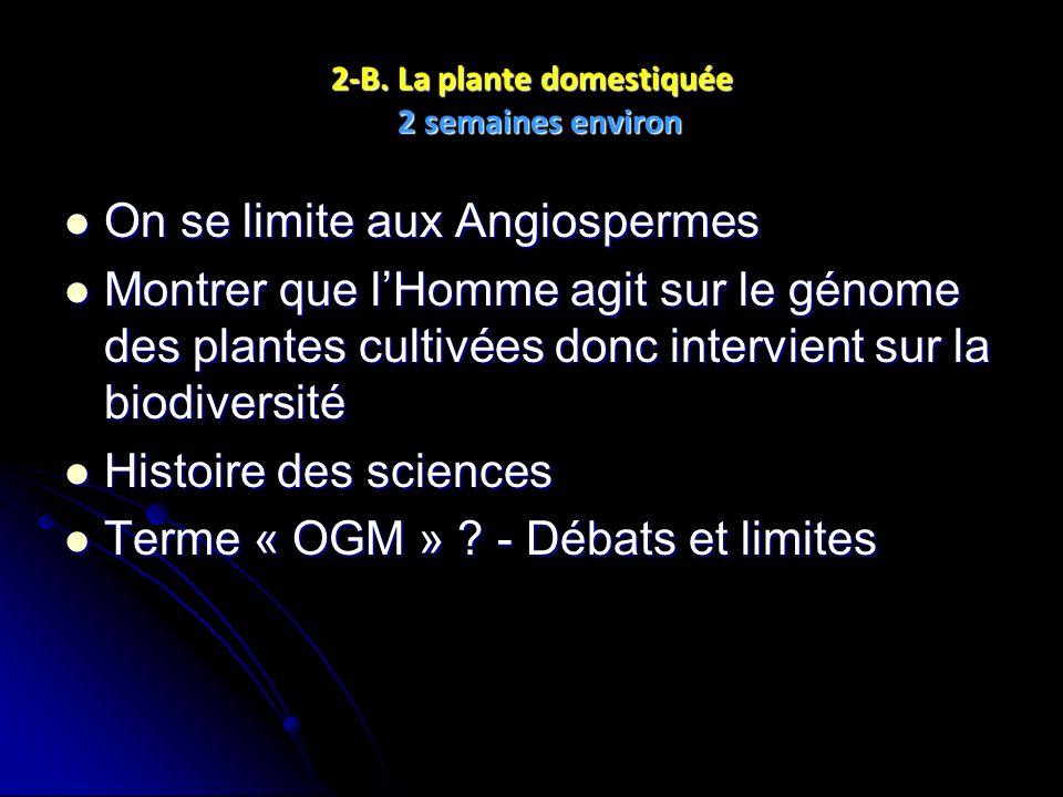 2-B. La plante domestiquée 2 semaines environ On se limite aux Angiospermes On se limite aux Angiospermes Montrer que lHomme agit sur le génome des pl