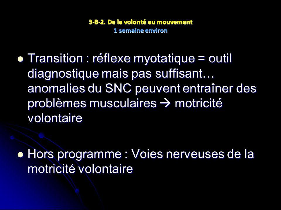 3-B-2. De la volonté au mouvement 1 semaine environ Transition : réflexe myotatique = outil diagnostique mais pas suffisant… anomalies du SNC peuvent