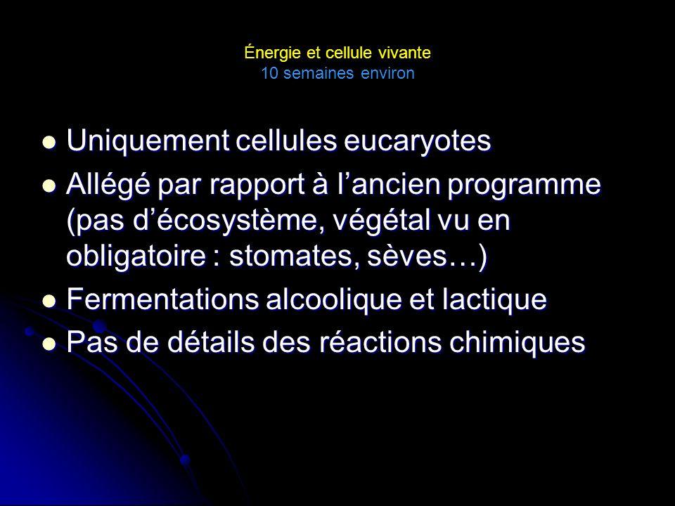 Énergie et cellule vivante 10 semaines environ Uniquement cellules eucaryotes Uniquement cellules eucaryotes Allégé par rapport à lancien programme (pas décosystème, végétal vu en obligatoire : stomates, sèves…) Allégé par rapport à lancien programme (pas décosystème, végétal vu en obligatoire : stomates, sèves…) Fermentations alcoolique et lactique Fermentations alcoolique et lactique Pas de détails des réactions chimiques Pas de détails des réactions chimiques