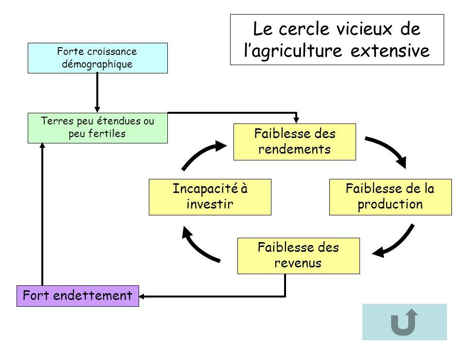 Le cercle vicieux de lagriculture extensive Incapacité à investir Terres peu étendues ou peu fertiles Faiblesse des rendements Faiblesse de la product