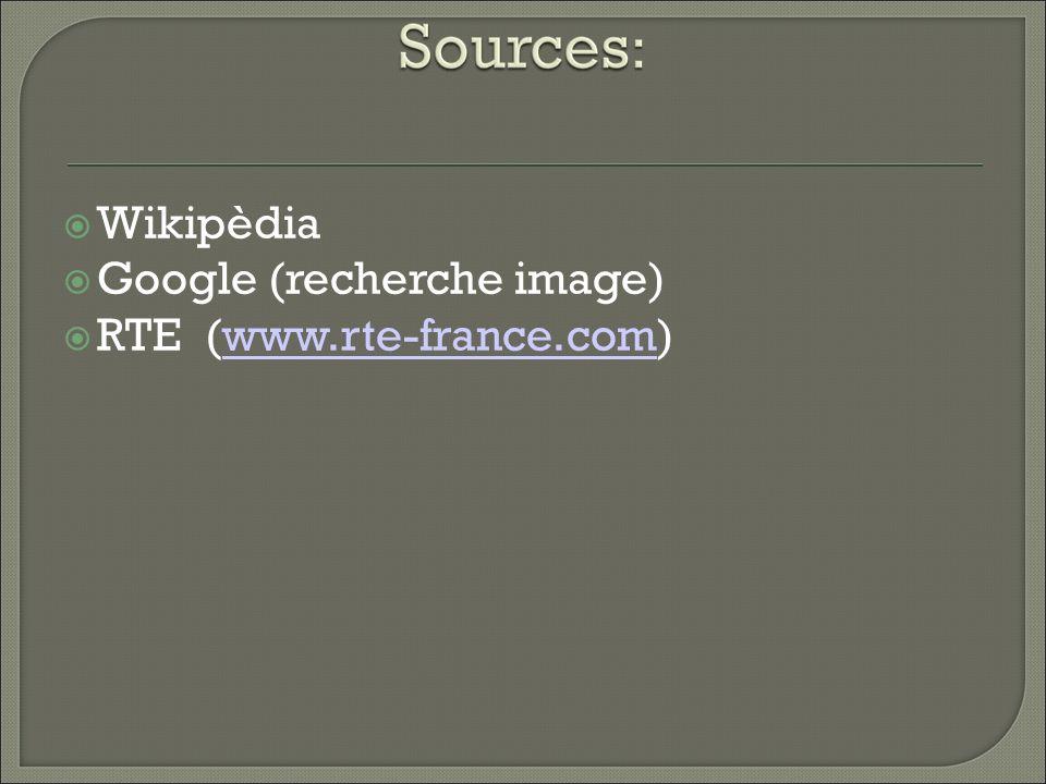 Wikipèdia Google (recherche image) RTE (www.rte-france.com)www.rte-france.com