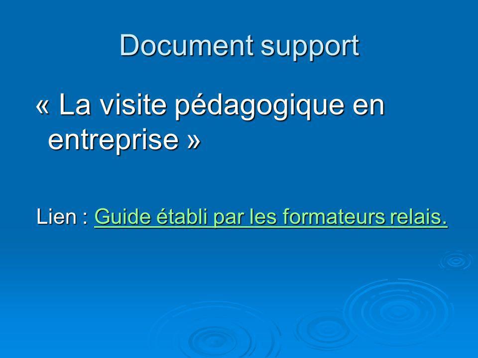 Document support « La visite pédagogique en entreprise » Lien : Guide établi par les formateurs relais. Guide établi par les formateurs relais.Guide é