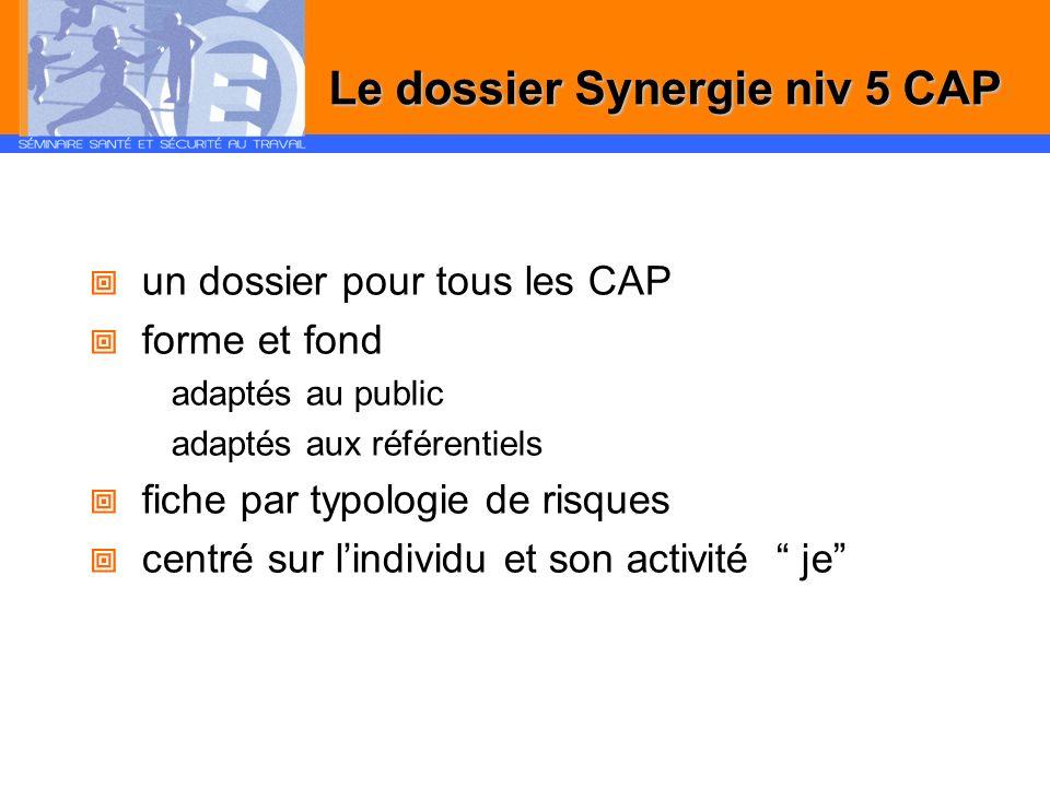 un dossier pour tous les CAP forme et fond adaptés au public adaptés aux référentiels fiche par typologie de risques centré sur lindividu et son activ