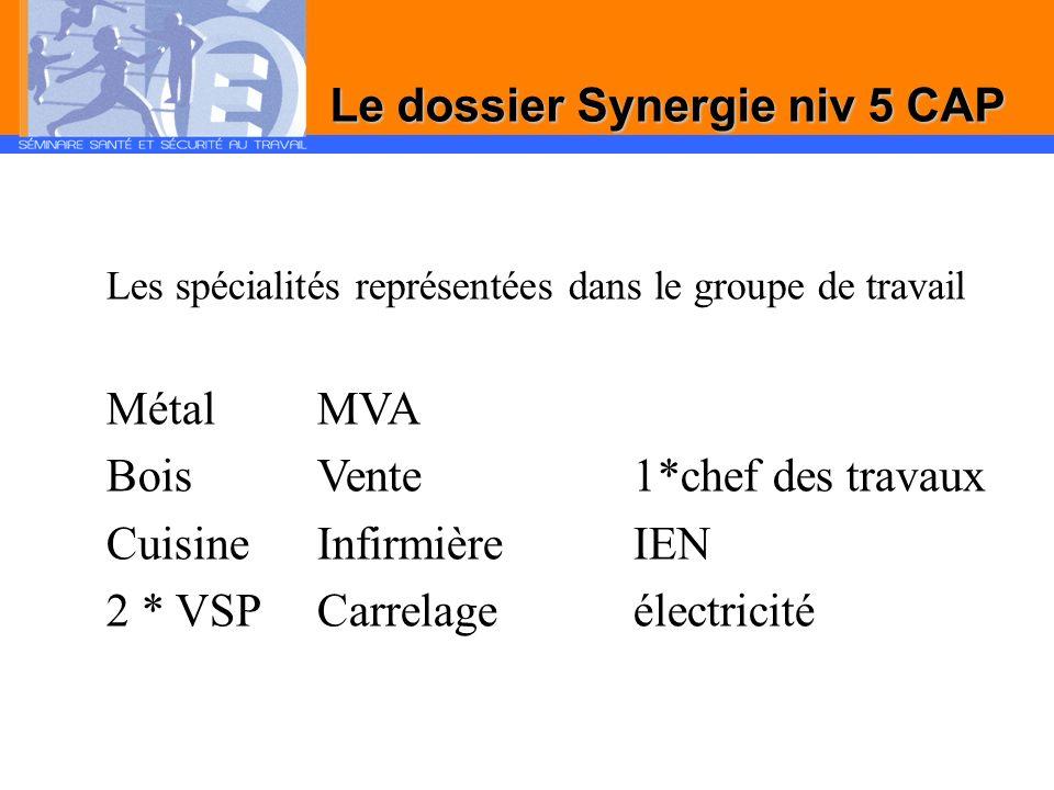 Les spécialités représentées dans le groupe de travail Métal MVA BoisVente1*chef des travaux CuisineInfirmièreIEN 2 * VSP Carrelageélectricité
