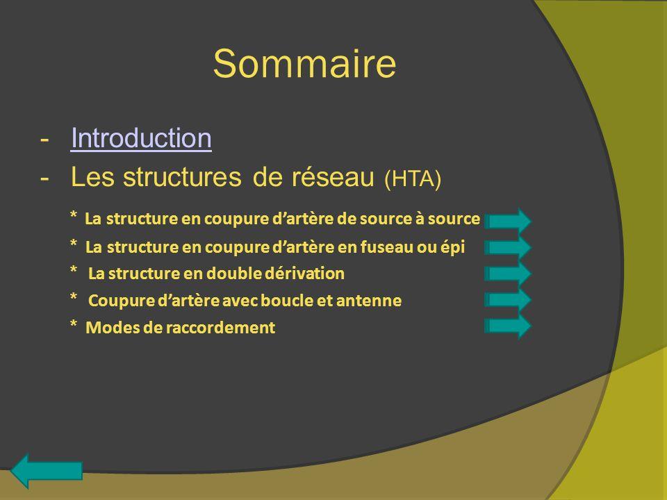 Sommaire -IntroductionIntroduction -Les structures de réseau (HTA) * La structure en coupure dartère de source à source * La structure en coupure dart
