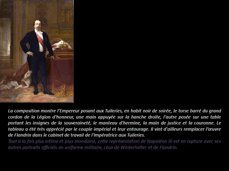La composition montre l'Empereur posant aux Tuileries, en habit noir de soirée, le torse barré du grand cordon de la Légion d'honneur, une main appuyé