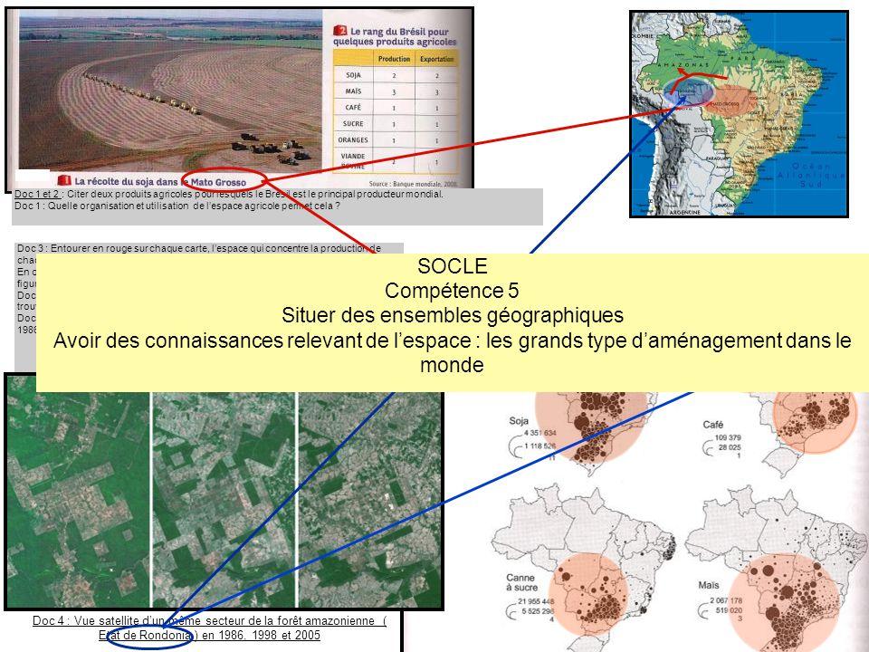 Doc 4 : Vue satellite dun même secteur de la forêt amazonienne ( Etat de Rondonia ) en 1986, 1998 et 2005 Doc 3 : La production de quelques produits c