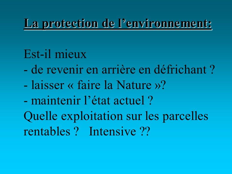 La protection de lenvironnement: La protection de lenvironnement: Est-il mieux - de revenir en arrière en défrichant .