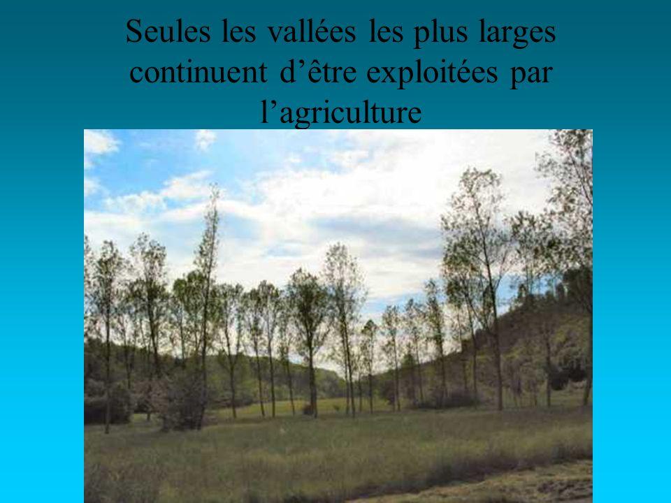 Seules les vallées les plus larges continuent dêtre exploitées par lagriculture