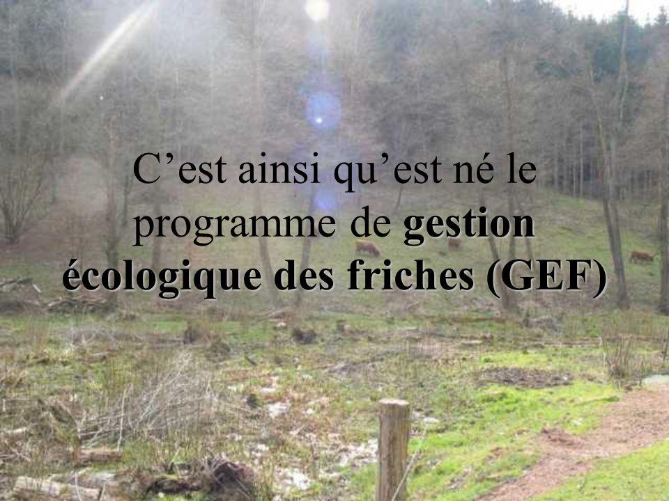 Cest ainsi quest né le programme de gestion écologique des friches (GEF)