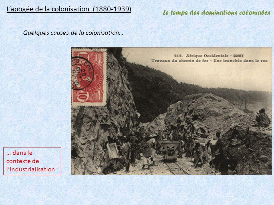 Le temps des dominations coloniales Lapogée de la colonisation (1880-1939) … dans le contexte de lindustrialisation Quelques causes de la colonisation…