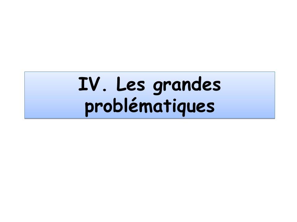 IV. Les grandes problématiques