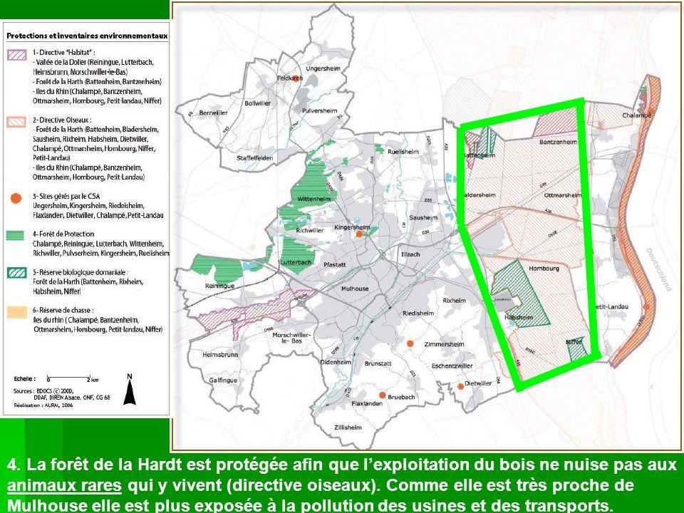 4. La forêt de la Hardt est protégée afin que lexploitation du bois ne nuise pas aux animaux rares qui y vivent (directive oiseaux). Comme elle est tr
