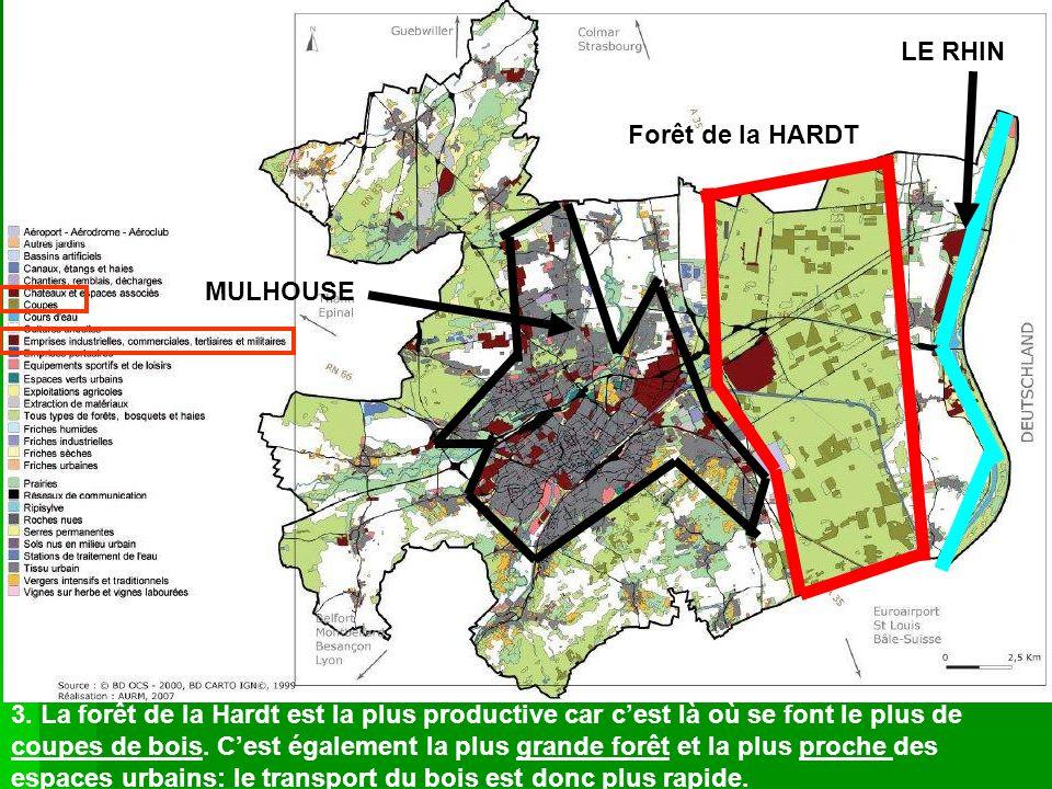 MULHOUSE LE RHIN 3. La forêt de la Hardt est la plus productive car cest là où se font le plus de coupes de bois. Cest également la plus grande forêt