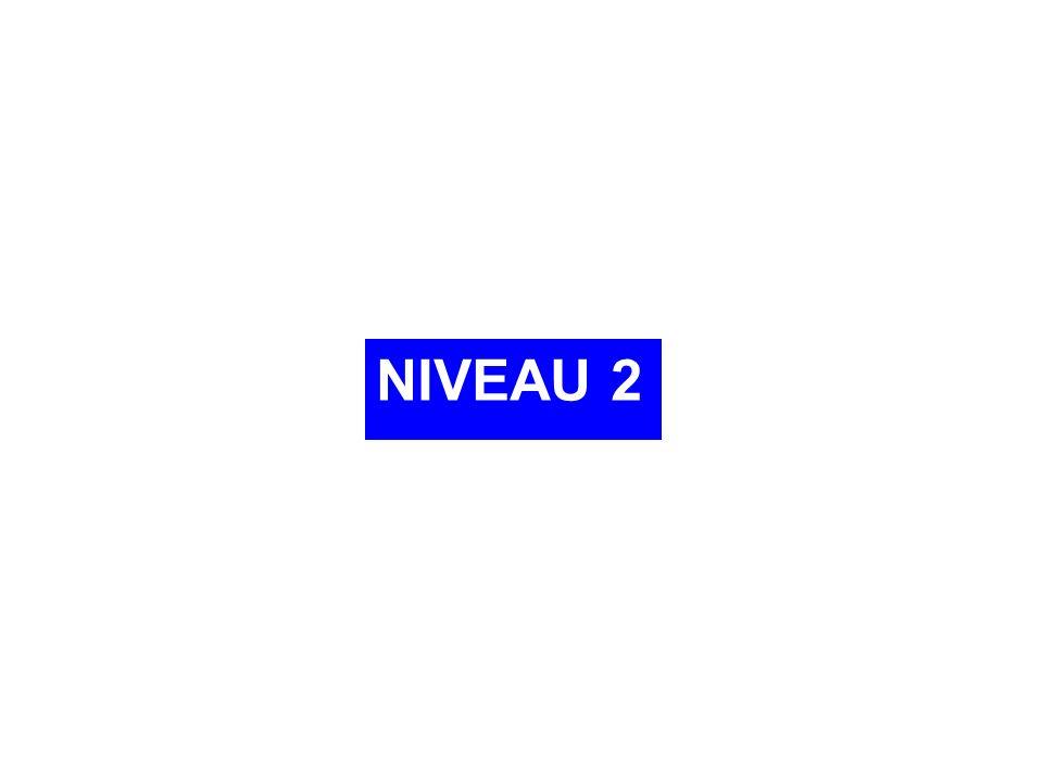 NIVEAU 2