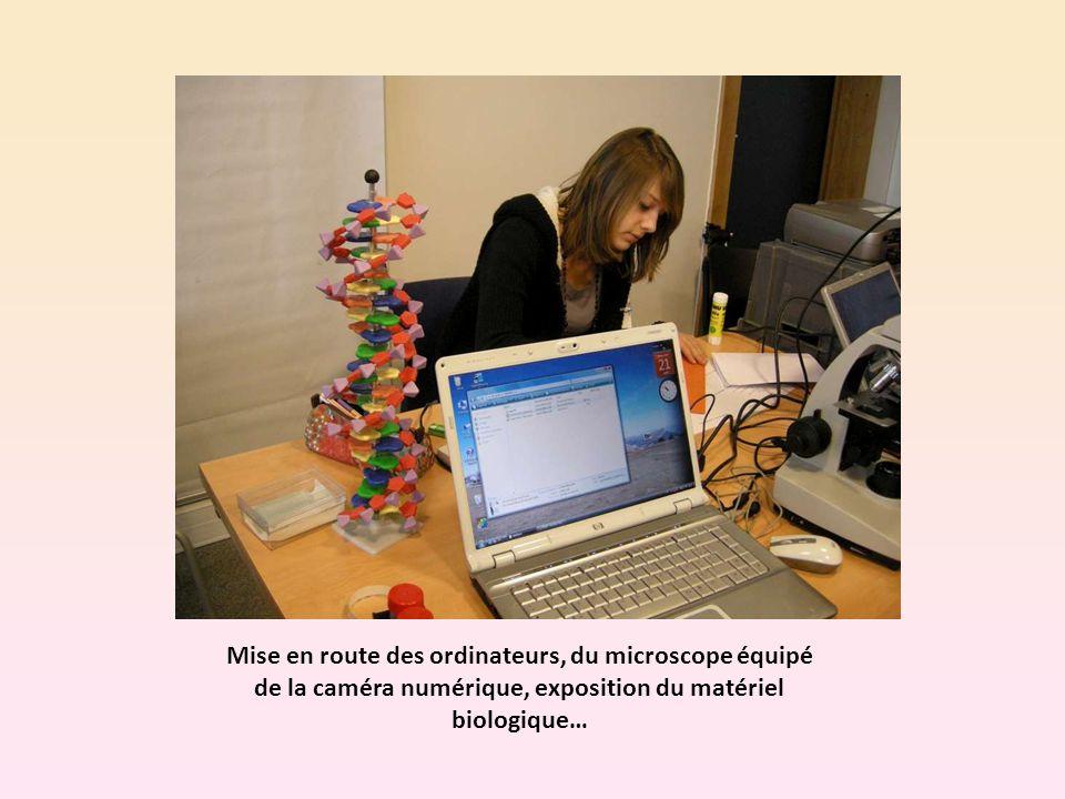 Mise en route des ordinateurs, du microscope équipé de la caméra numérique, exposition du matériel biologique…