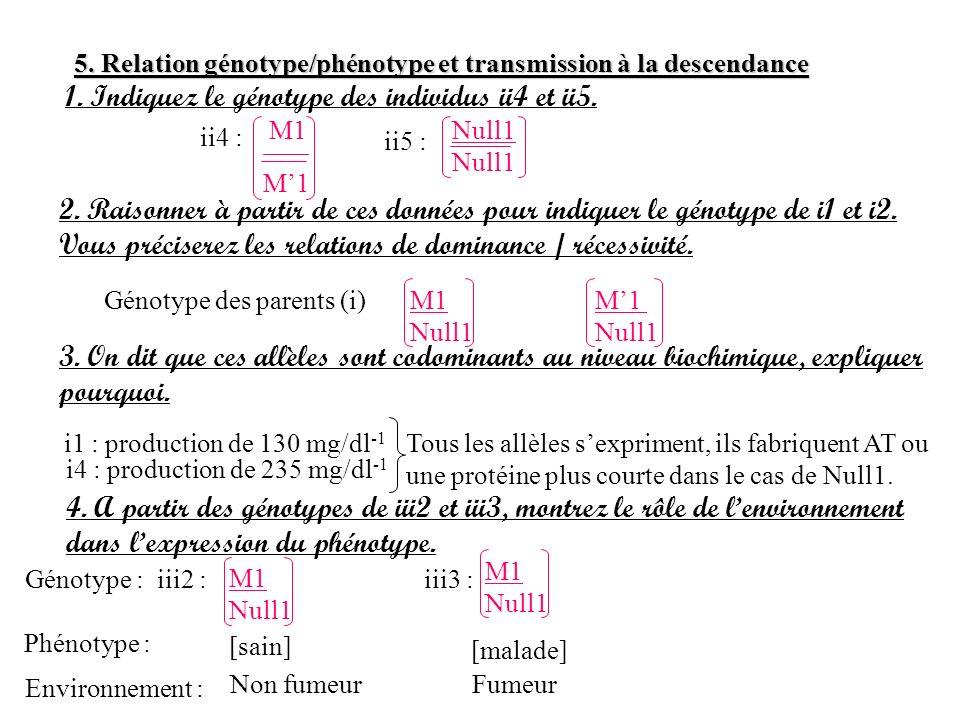 5. Relation génotype/phénotype et transmission à la descendance 1. Indiquez le génotype des individus ii4 et ii5. ii4 : M1 ii5 : Null1 2. Raisonner à