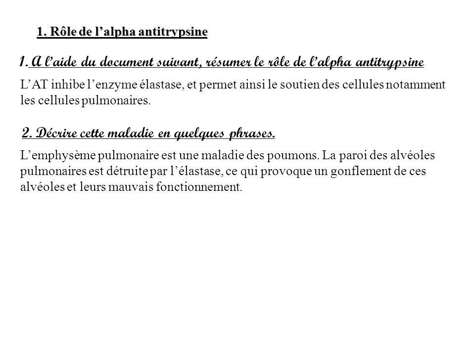 1. Rôle de lalpha antitrypsine 1. A laide du document suivant, résumer le rôle de lalpha antitrypsine LAT inhibe lenzyme élastase, et permet ainsi le