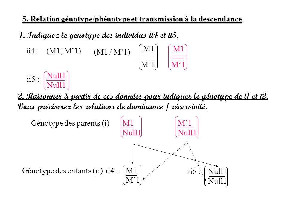 5. Relation génotype/phénotype et transmission à la descendance 1. Indiquez le génotype des individus ii4 et ii5. ii4 :(M1; M1) (M1 / M1) M1 ii5 : Nul