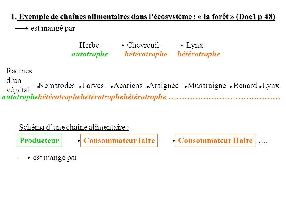 1. Exemple de chaînes alimentaires dans lécosystème : « la forêt » (Doc1 p 48) Herbe ChevreuilLynx est mangé par Musaraigne RenardLynxAraignéeAcariens
