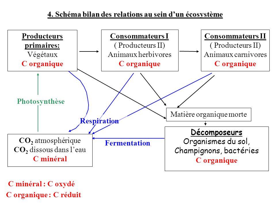 4. Schéma bilan des relations au sein dun écosystème Décomposeurs Organismes du sol, Champignons, bactéries C organique Producteurs primaires: Végétau