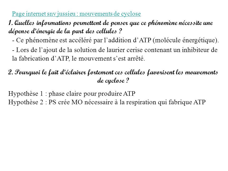 Page internet snv jussieu : mouvements de cyclose 1.