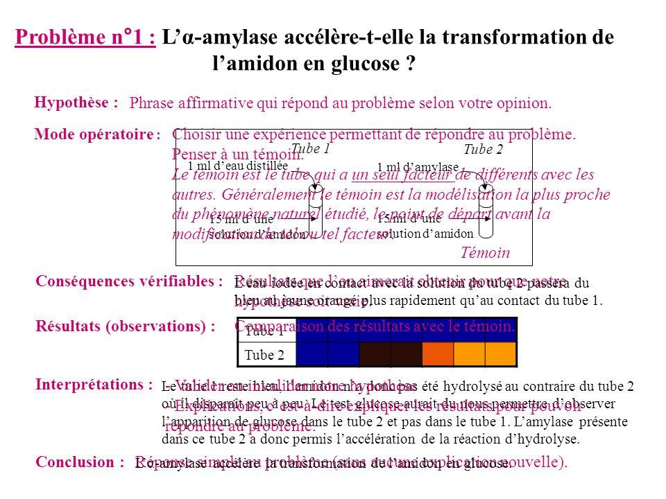 Problème n°2 : Lα-amylase est-elle spécifique .Hypothèse : Lα-amylase est spécifique.