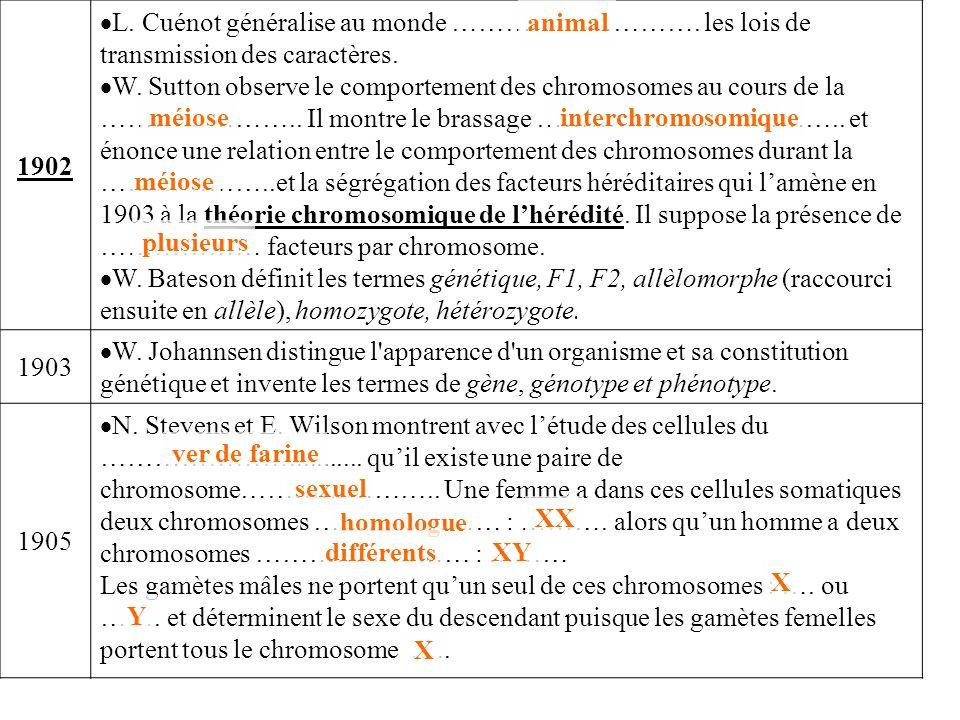 1902 L. Cuénot généralise au monde ………………………. les lois de transmission des caractères. W. Sutton observe le comportement des chromosomes au cours de l
