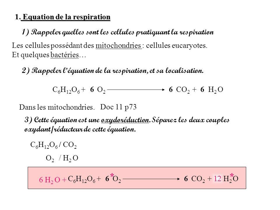 1. Equation de la respiration 1) Rappeler quelles sont les cellules pratiquant la respiration Les cellules possédant des mitochondries : cellules euca
