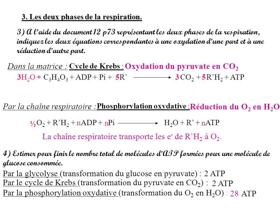 3) A laide du document 12 p73 représentant les deux phases de la respiration, indiquez les deux équations correspondantes à une oxydation dune part et
