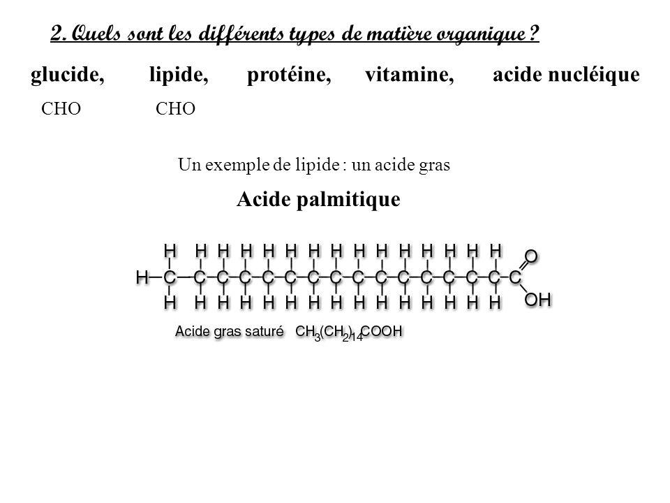 2. Quels sont les différents types de matière organique ? glucide, lipide, protéine, vitamine, acide nucléique Un exemple de lipide : un acide gras Ac