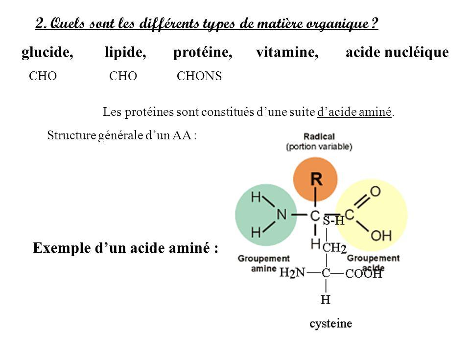 2. Quels sont les différents types de matière organique ? glucide, lipide, protéine, vitamine, acide nucléique Les protéines sont constitués dune suit