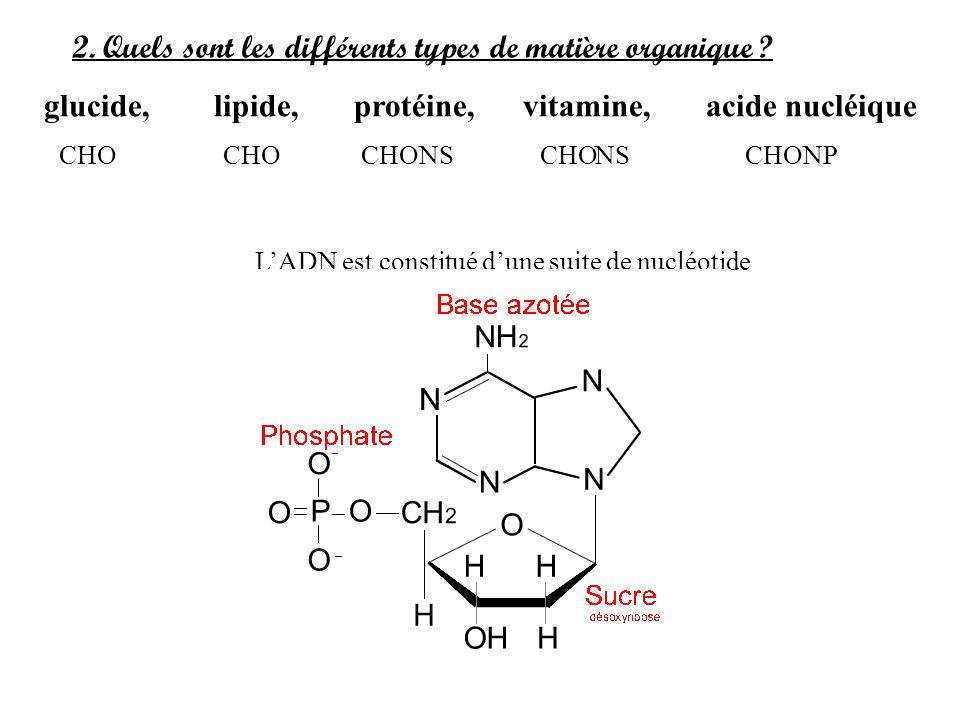 2. Quels sont les différents types de matière organique ? glucide, lipide, protéine, vitamine, acide nucléique LADN est constitué dune suite de nucléo