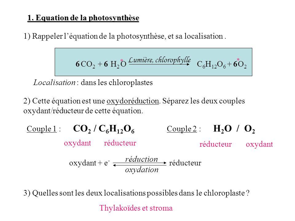 1. Equation de la photosynthèse 1) Rappeler léquation de la photosynthèse, et sa localisation. CO 2 + H 2 O6 * * C 6 H 12 O 6 + O 2 Lumière, chlorophy