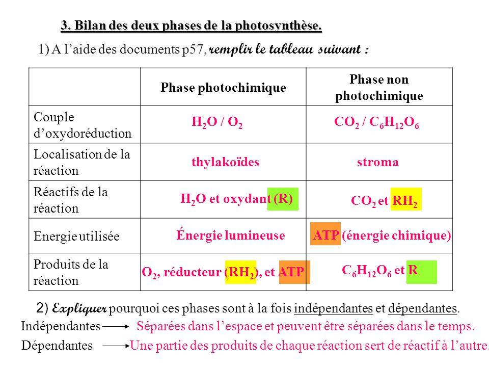 O 2, réducteur (RH 2 ), et ATP Phase photochimique Phase non photochimique Couple doxydoréduction Localisation de la réaction Réactifs de la réaction