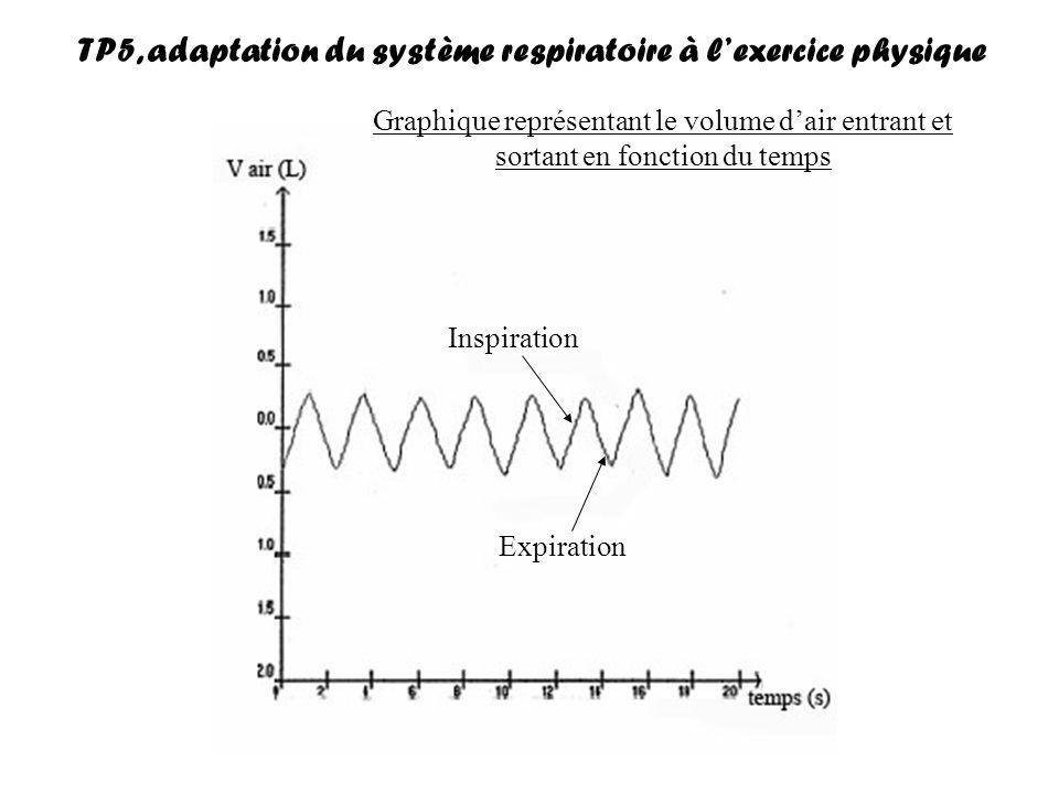 Quelques définitions : Volume courant (VC) : volume en litre entrant dans les poumons au cours dune inspiration normale Fréquence respiratoire (FR) : nombre de respirations (= inspiration + expiration) par minute Débit respiratoire (DR) : volume dair circulant dans les poumons par minute DR (L/min) =VC x FR