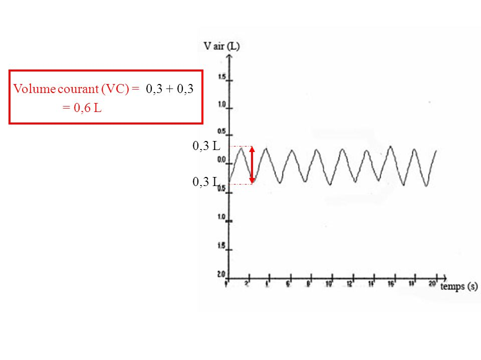 Volume courant (VC) = 0,3 L 0,3 + 0,3 = 0,6 L