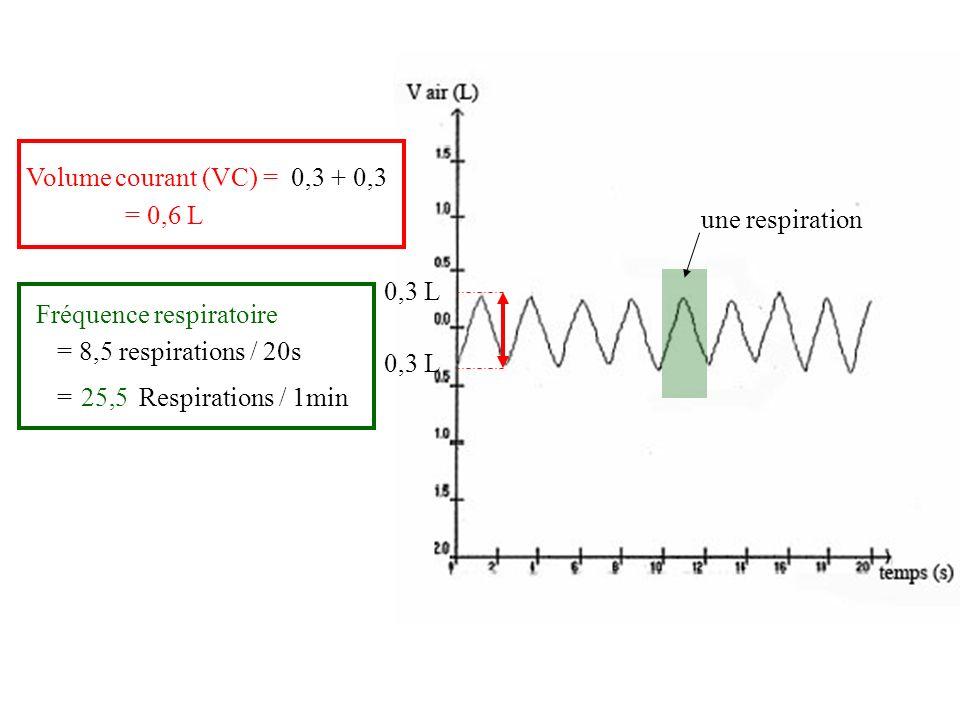 Volume courant (VC) = 0,3 L 0,3 + 0,3 = 0,6 L Fréquence respiratoire (FR) une respiration = 8,5 respirations / 20s = …… Respirations / 1min 25,5 Débit respiratoire (DR) = VC x FR = 0,6 x 25,5= 15,3 L/min