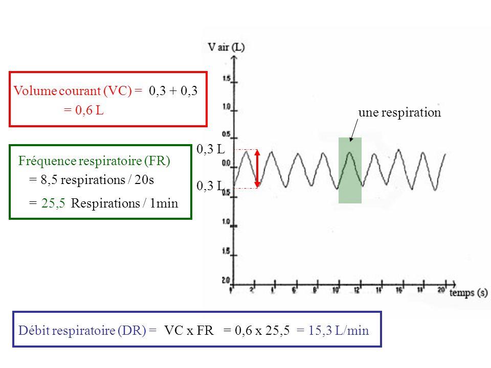 Graphique représentant le volume dair entrant et sortant en fonction du temps Après leffort Avant leffort FR =6,25 en 20s = 6,25 x 3 = 18,75 resp/min VC = 0,5 0,5 + 0,5 = 1 L DR = VC x FR = 1 x 18,75 = 18,75 L/min