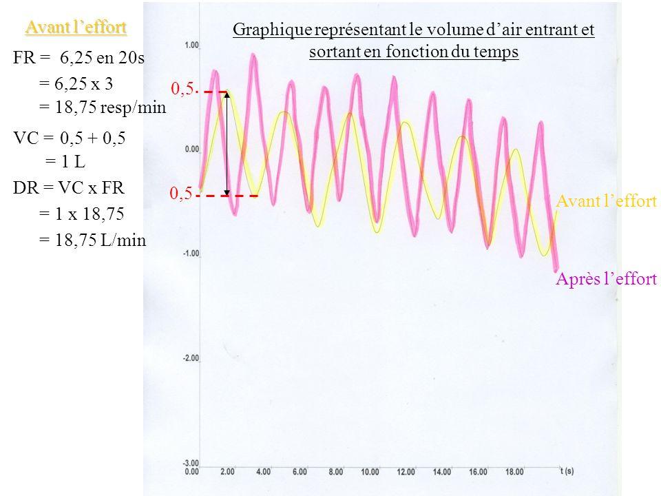 Graphique représentant le volume dair entrant et sortant en fonction du temps Après leffort Avant leffort FR =6,25 en 20s = 6,25 x 3 = 18,75 resp/min VC =0,5 + 0,5 = 1 L DR = VC x FR = 1 x 18,75 = 18,75 L/min Après leffort FR =10 en 20s = 10 x 3 = 30 resp/min VC =0,7 + 0,7 = 1,4 L DR = VC x FR = 1,4 x 30 = 42 L/min 0,7