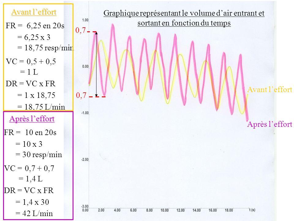 Graphique représentant le volume dair entrant et sortant en fonction du temps Après leffort Avant leffort FR =6,25 en 20s = 6,25 x 3 = 18,75 resp/min