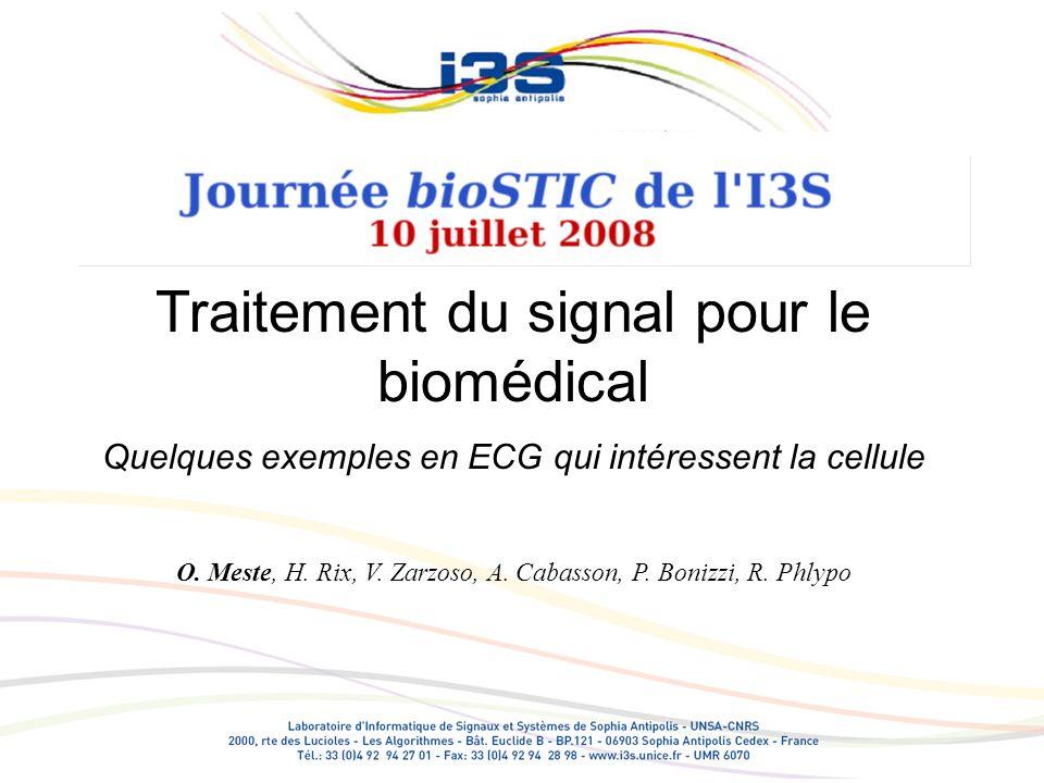 Principaux domaines de léquipe: Traitement numérique des signaux ECG Analyse des intervalles Analyse de formes (les ondes de lECG) Séparation de sources (AF et activité ventriculaire) Autres Implants cochléaires, Acouphène, PEA EEG sommeil