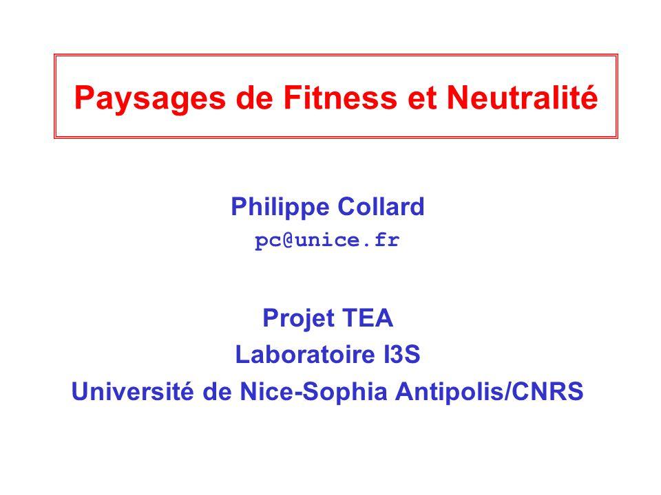 1 Paysages de Fitness et Neutralité Philippe Collard pc@unice.fr Projet TEA Laboratoire I3S Université de Nice-Sophia Antipolis/CNRS