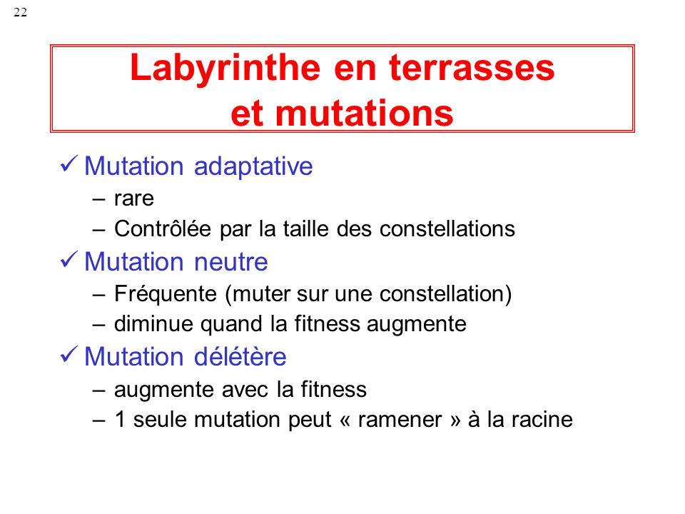 22 Labyrinthe en terrasses et mutations Mutation adaptative –rare –Contrôlée par la taille des constellations Mutation neutre –Fréquente (muter sur un