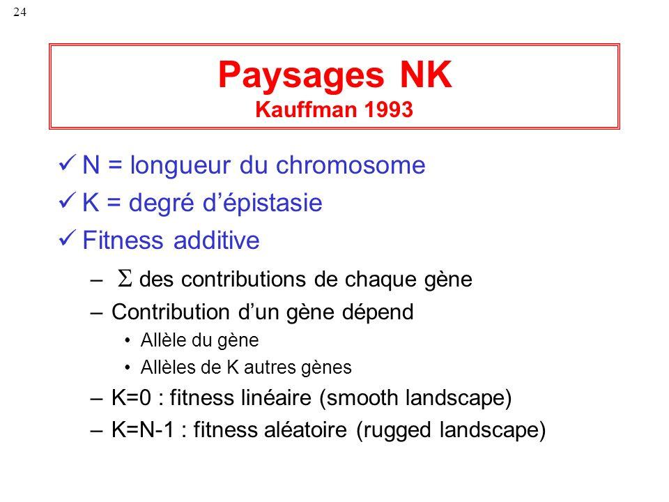 24 Paysages NK Kauffman 1993 N = longueur du chromosome K = degré dépistasie Fitness additive – des contributions de chaque gène –Contribution dun gèn