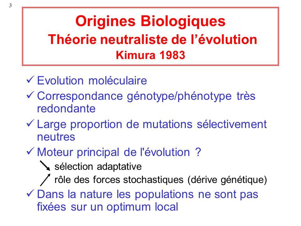 3 Origines Biologiques Théorie neutraliste de lévolution Kimura 1983 Evolution moléculaire Correspondance génotype/phénotype très redondante Large pro