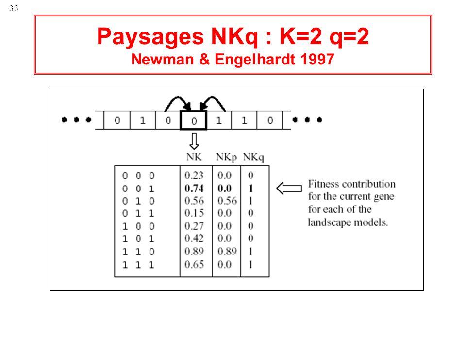 33 Paysages NKq : K=2 q=2 Newman & Engelhardt 1997