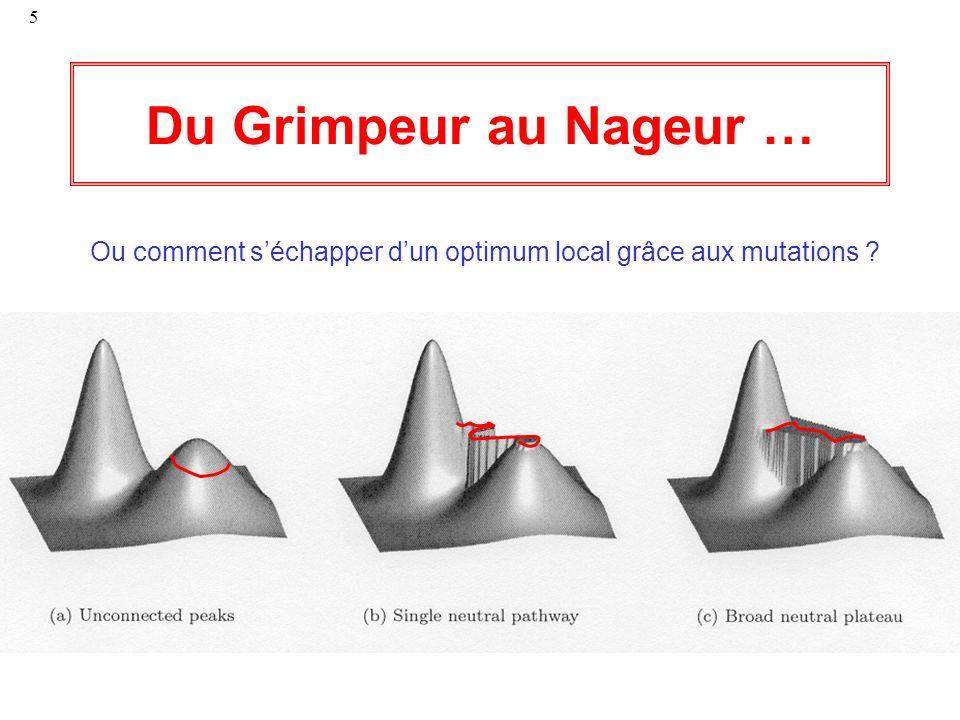 5 Du Grimpeur au Nageur … Ou comment séchapper dun optimum local grâce aux mutations ?